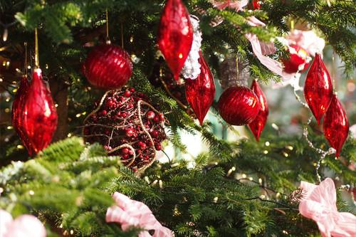 お散歩写真 de クリスマス